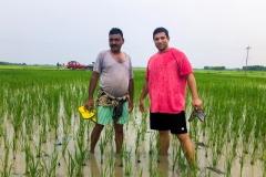 Vikrant och Shailender i risfält